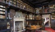 Vanitas. Fiori di carta e antichi vasi da farmacia